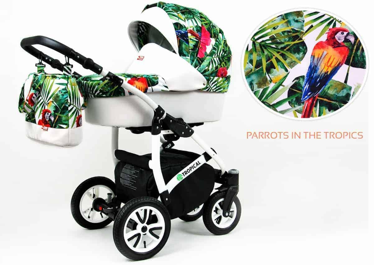 parrots in tropics